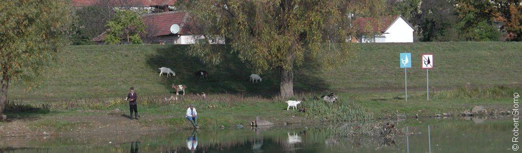 cropped-cropped-Bodrog-river-Hungary-2005-Robert-Slomp-1c.jpg